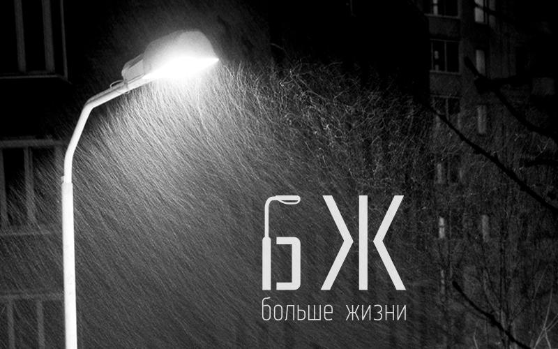 разработка логотипа БЖ
