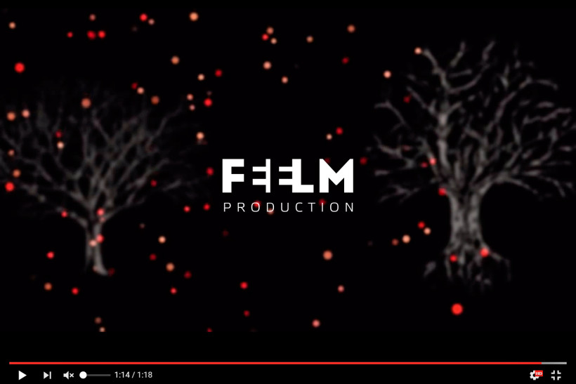 FEELM видео продакшн